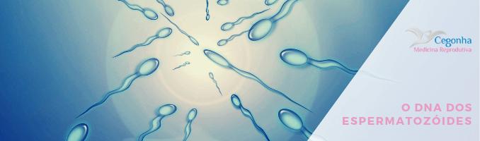dna dos espermatozoides
